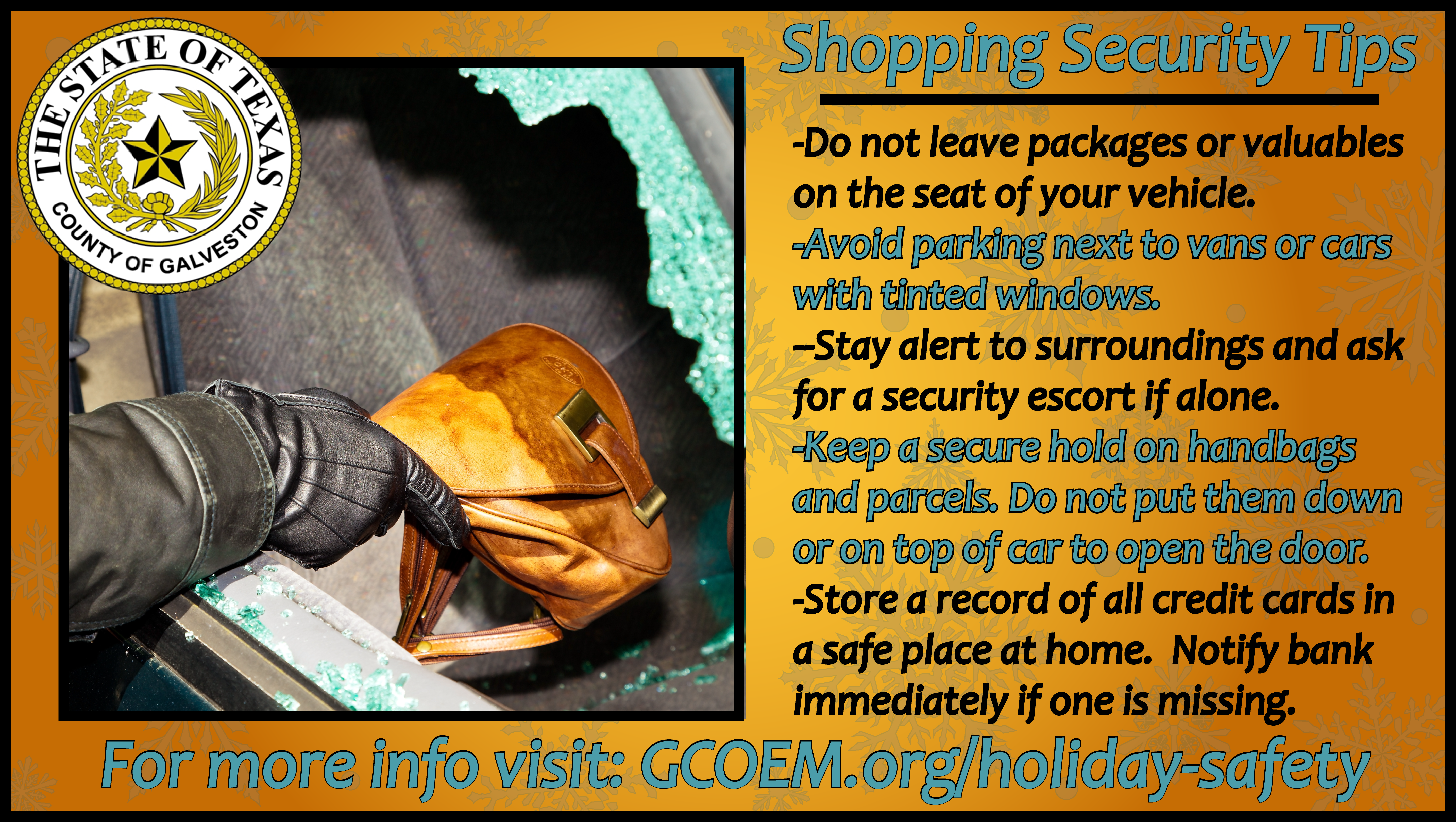Christmas Shopping Safety